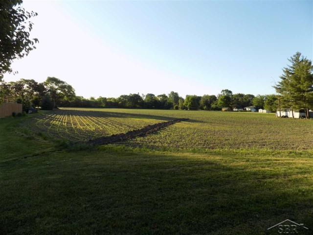 Reese Rd., Reese, MI 48757 (MLS #31350754) :: The John Wentworth Group