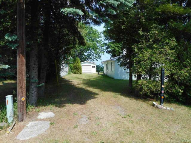 2935 N Lakeshore, Applegate, MI 48450 (MLS #31350942) :: The John Wentworth Group