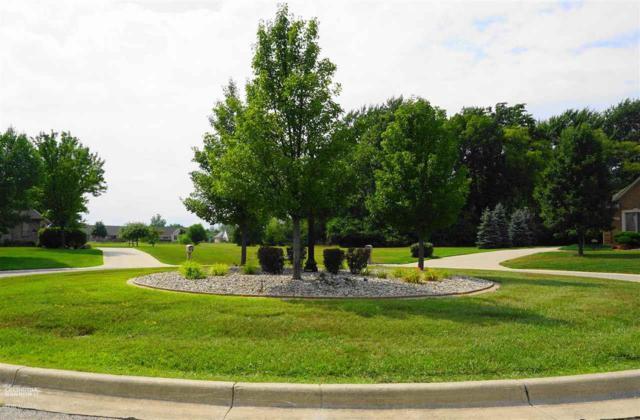 205 Golfview Ct, Saint Clair, MI 48079 (MLS #31355108) :: The Tom Lipinski Team at Keller Williams Lakeside Market Center
