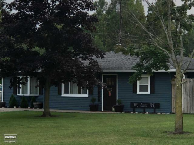 7520 Starville Rd, Marine City, MI 48039 (MLS #31357479) :: The John Wentworth Group