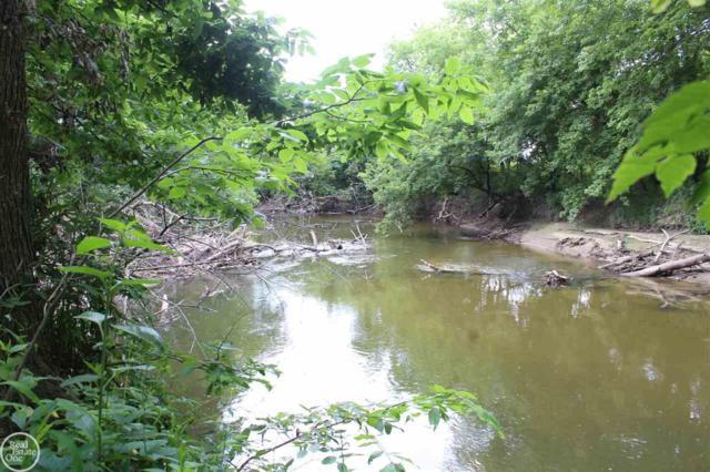 River Lane, Clinton Township, MI 48038 (MLS #31360734) :: The John Wentworth Group