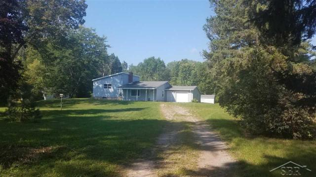 6176 Fort Rd., Birch Run, MI 48415 (MLS #31363105) :: The John Wentworth Group