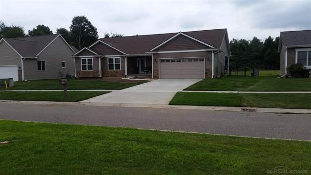 7800 Wilshire, Almont, MI 48003 (MLS #31374361) :: The John Wentworth Group