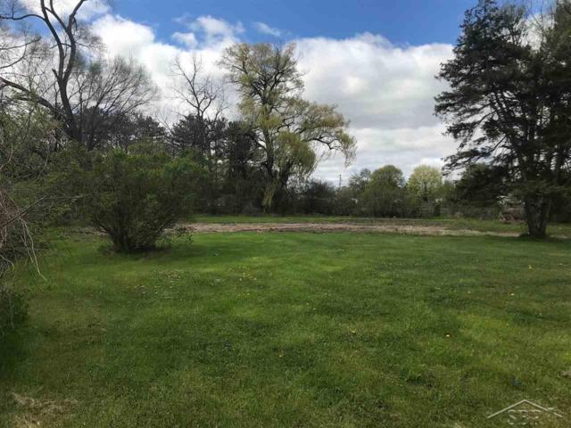 1255 Schust, Carrollton, MI 48604 (MLS #31380009) :: The BRAND Real Estate