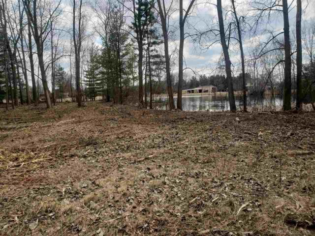 4851 Surrey Dr, Almont, MI 48003 (MLS #31384581) :: The John Wentworth Group