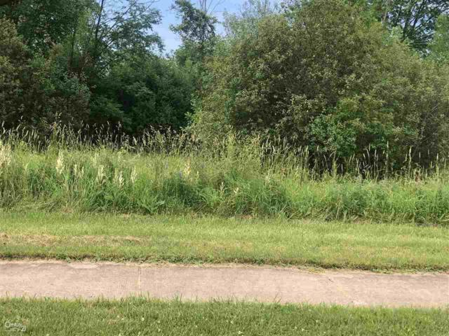 0 Orchard Lot 5, Capac, MI 48014 (MLS #31386106) :: The Tom Lipinski Team at Keller Williams Lakeside Market Center