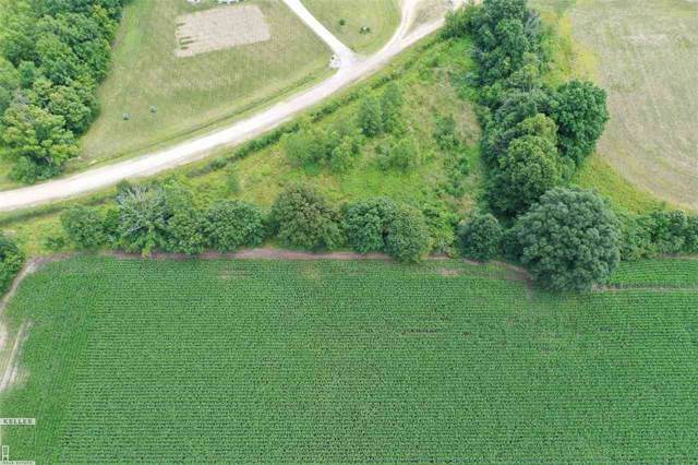 0 Leah, Almont, MI 48003 (MLS #31390223) :: The John Wentworth Group