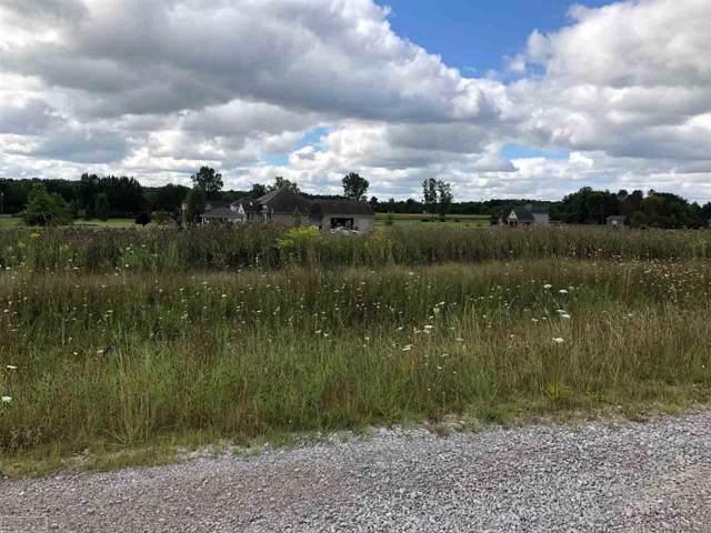 0 Fox Ridge, Almont, MI 48003 (MLS #31392717) :: The John Wentworth Group