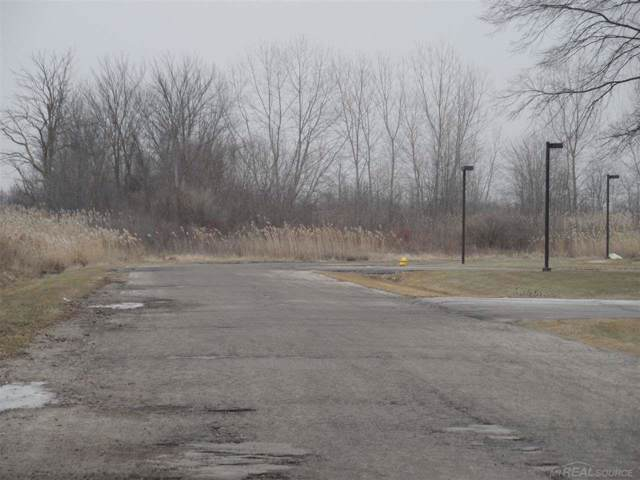 Gratiot Vacant, New Haven, MI 48048 (MLS #31393216) :: The John Wentworth Group