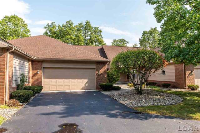 360 Richlyn, Adrian, MI 49221 (MLS #31394246) :: The John Wentworth Group