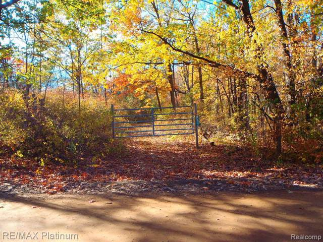 0 Cole Rd, Linden, MI 48451 (MLS #219120566) :: The John Wentworth Group