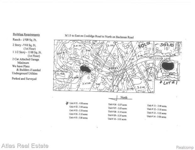 6498 Bachmann Ln, Goodrich, MI 48438 (MLS #2200003768) :: The John Wentworth Group