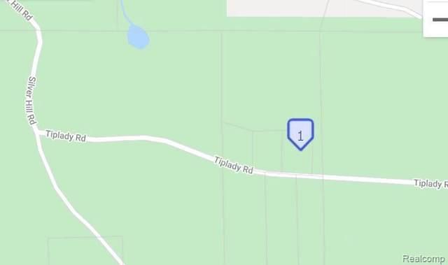 0 Tiplady, Pinckney, MI 48169 (MLS #2200034555) :: The Tom Lipinski Team at Keller Williams Lakeside Market Center