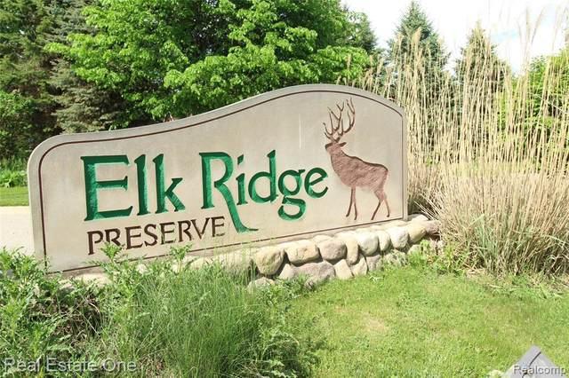 12805 Elk Run Pkwy, Holly, MI 48442 (MLS #2200037851) :: The Tom Lipinski Team at Keller Williams Lakeside Market Center