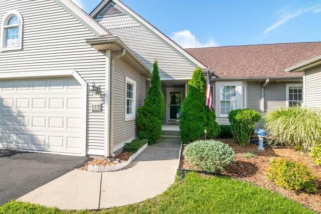 222 Pierce Lake Dr, Chelsea, MI 48118 (MLS #3275383) :: Scot Brothers Real Estate