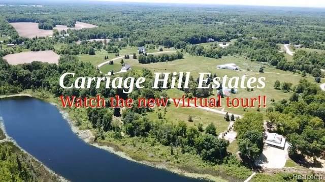 4133-1 Carriage Hill Dr, Metamora, MI 48455 (MLS #2210000137) :: The BRAND Real Estate