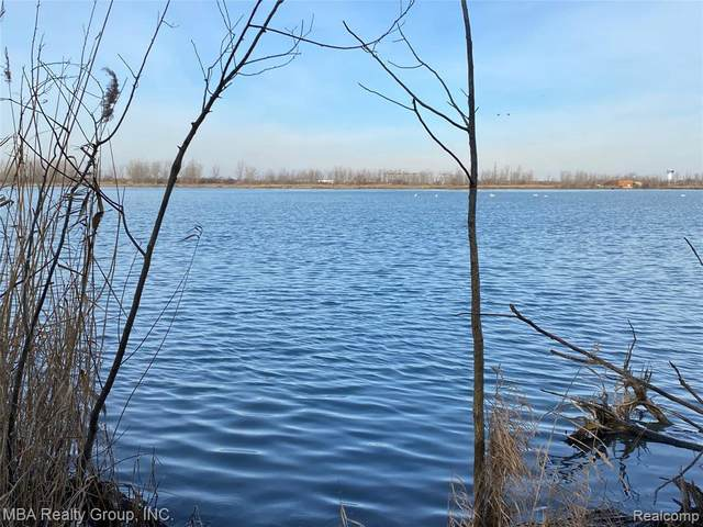 Vacant Meridian Rd, Grosse Ile, MI 48138 (MLS #2210010312) :: The BRAND Real Estate