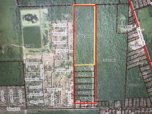 TBD Metcalf 3002-200 Rd, Lakeport, MI 48059 (MLS #2210021250) :: The BRAND Real Estate