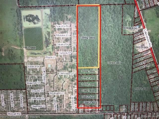 TBD Metcalf 3002-100 Rd, Lakeport, MI 48059 (MLS #2210021256) :: The BRAND Real Estate