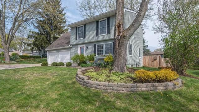 1785 S Franklin Ct, Ann Arbor, MI 48103 (MLS #3280321) :: The BRAND Real Estate