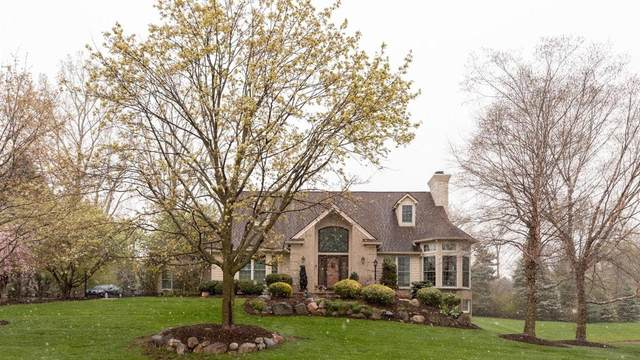 5731 Lohr Lake Dr, Ann Arbor, MI 48108 (MLS #3280322) :: The BRAND Real Estate