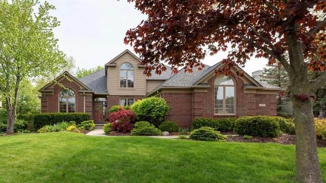 4858 Polo Fields Drive, Ann Arbor, MI 48103 (MLS #3281046) :: The BRAND Real Estate
