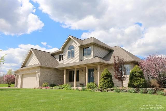 10214 Tims Lake Blvd, Grass Lake, MI 49240 (MLS #3281505) :: Kelder Real Estate Group