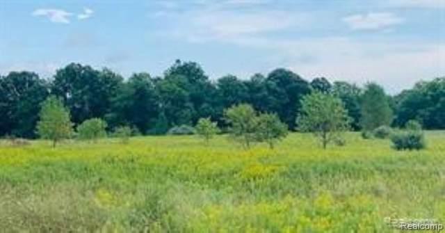 0 Herrington Rd, Webberville, MI 48892 (MLS #2210083490) :: Kelder Real Estate Group