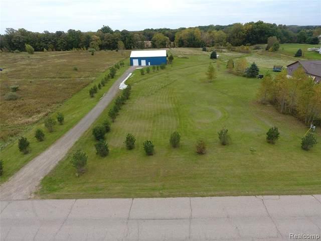 5260 Herrington Rd, Webberville, MI 48892 (MLS #2210084244) :: Kelder Real Estate Group
