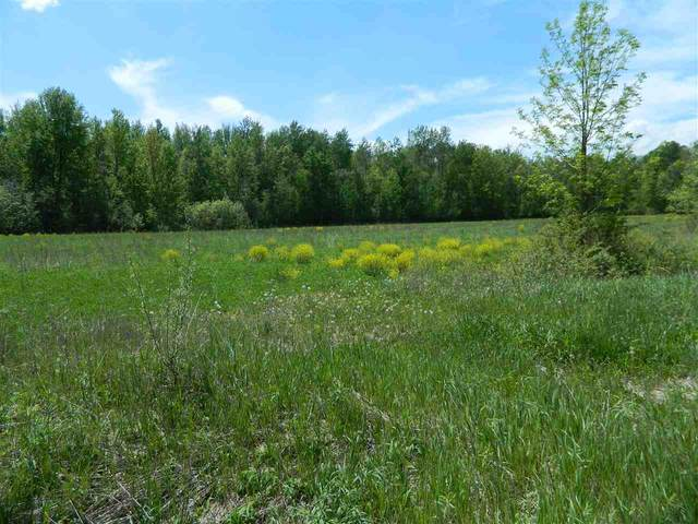 0 W Mount Forest Rd, Pinconning, MI 48650 (MLS #50006145) :: The BRAND Real Estate