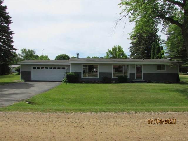 7290 Blue Water Blvd., Lexington, MI 48450 (MLS #50016447) :: Scot Brothers Real Estate