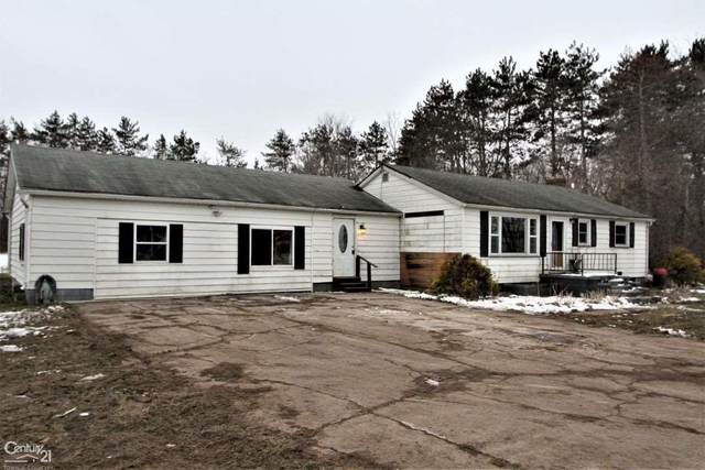 4586 Aitken, Croswell, MI 48422 (MLS #50032128) :: The BRAND Real Estate