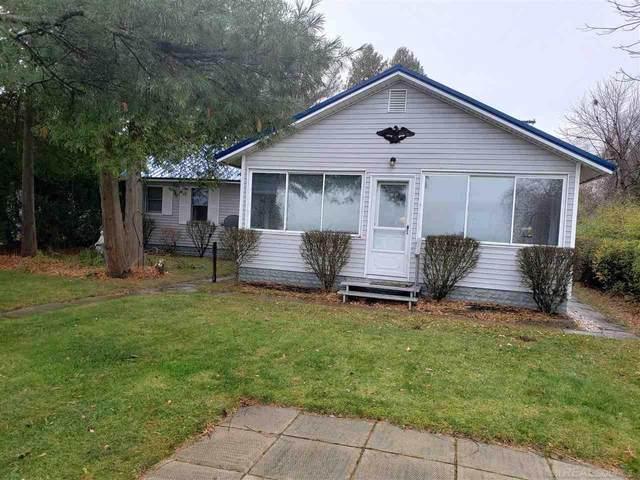 1159 S Lakeshore, Carsonville, MI 48419 (MLS #50035284) :: The BRAND Real Estate
