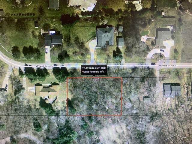 Hornbeam, Saginaw, MI 48603 (MLS #50035374) :: The BRAND Real Estate