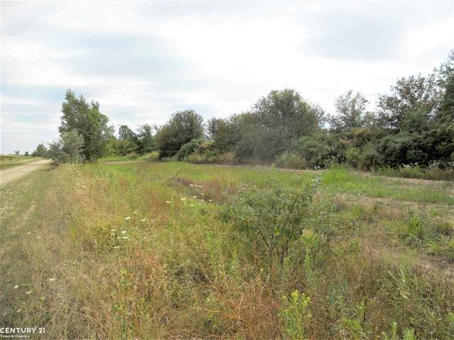 0 Windmill Lane, Imlay City, MI 48444 (MLS #50036635) :: The BRAND Real Estate