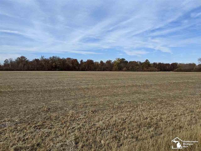 0 N Dixie, Monroe, MI 48162 (MLS #50036775) :: The BRAND Real Estate