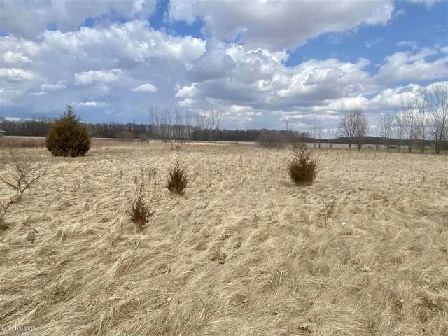 Chesaning Rd, Chesaning, MI 48616 (MLS #50037109) :: The BRAND Real Estate