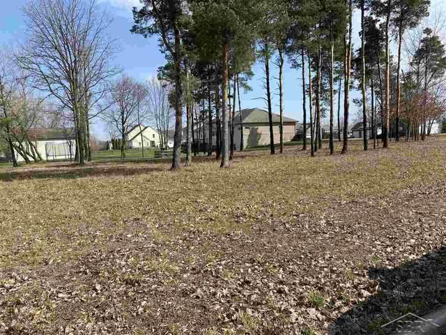 Lot 40 Garner, Freeland, MI 48623 (MLS #50038093) :: The BRAND Real Estate