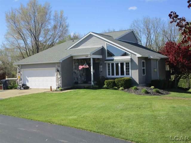 6601 Pocklington, Britton, MI 49229 (MLS #50041445) :: The BRAND Real Estate