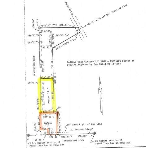0 (Parcels B&C) Black River Rd., Croswell, MI 48422 (MLS #50041518) :: The BRAND Real Estate