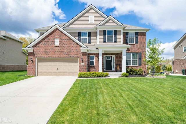 354 Findley, Lake Orion, MI 48360 (MLS #50041648) :: The BRAND Real Estate