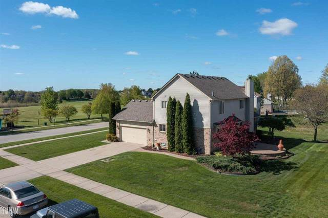 31143 Broderick, Chesterfield, MI 48051 (MLS #50041771) :: The BRAND Real Estate