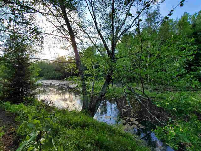 Lots164,165,166 Larch Trail, Lake, MI 48632 (MLS #50043070) :: The BRAND Real Estate