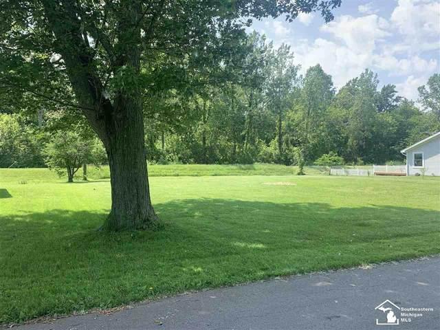 Sycamore, Newport, MI 48166 (MLS #50044080) :: The BRAND Real Estate