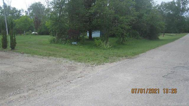 5724 Lakeview, Forestville, MI 48434 (MLS #50047211) :: The BRAND Real Estate