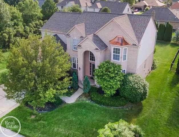 50170 Crusader, Macomb Twp, MI 48044 (MLS #50047351) :: Kelder Real Estate Group