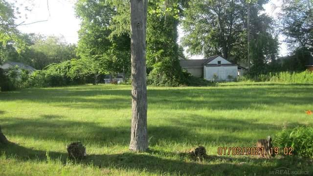 0 Elm, Lexington, MI 48450 (MLS #50047925) :: The BRAND Real Estate