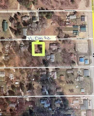 VL Elm Rd., Worth Twp, MI 48450 (MLS #50052719) :: The BRAND Real Estate