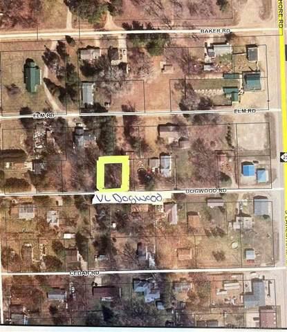 VL Dogwood Rd, Worth Twp, MI 48450 (MLS #50052720) :: The BRAND Real Estate
