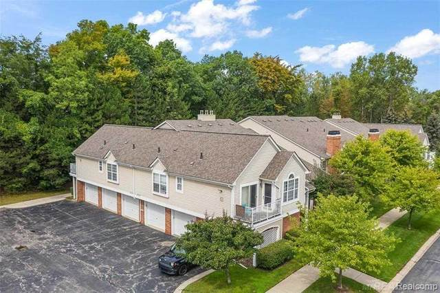 56299 Chesapeake Trail, Shelby Twp, MI 48316 (MLS #50055116) :: The BRAND Real Estate